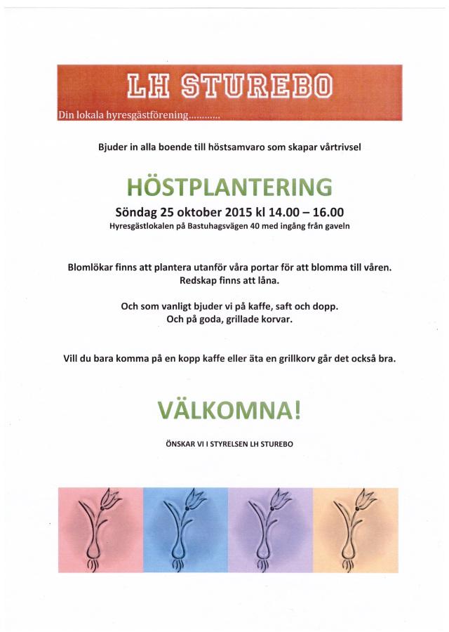 2015-10-24 Höstplantering