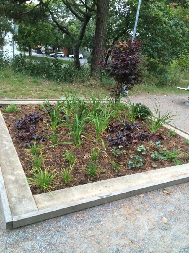 plantering-sandlada